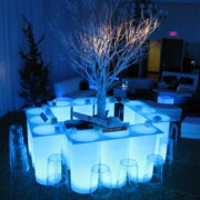 Winter & Ice illuminated Cylinder Bar with Birch Tree